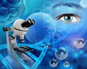 הכינוס הרביעי בנושא הנדסת ניסויים